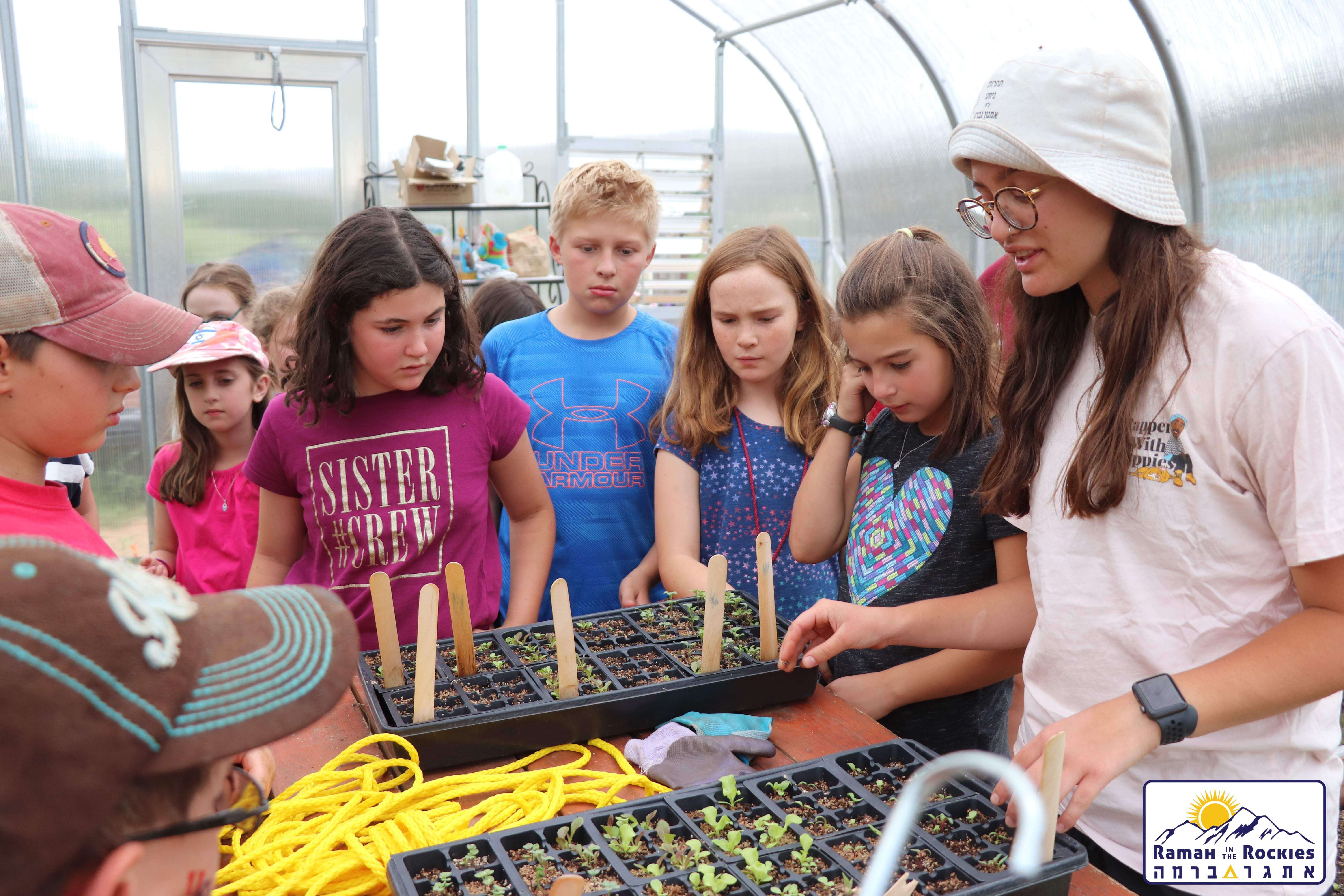 Metaylim campers learning in greenhouse